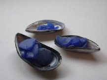 Blue Sea glass and mussel shells